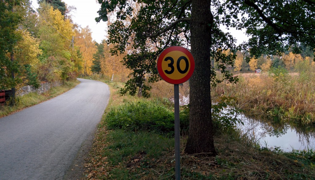 En av tio nyuppsatta 30-skyltar i vårt område. Tänk på barn, djur och grannar och håll hastighetsbegränsningen.
